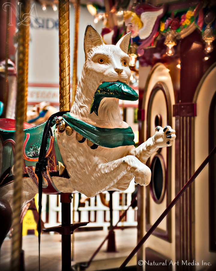 Creepy Carousel Cat